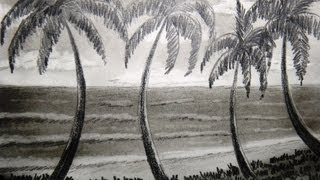 How to draw seashore and palm tree - Part 2