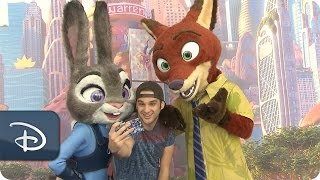 'Zootopia' Meet-Up | Walt Disney World