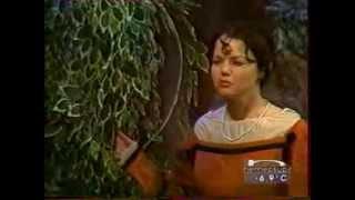 К Гоцци Три апельсина (1998)