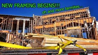 Renovating an Abandoned Mansion Part 10
