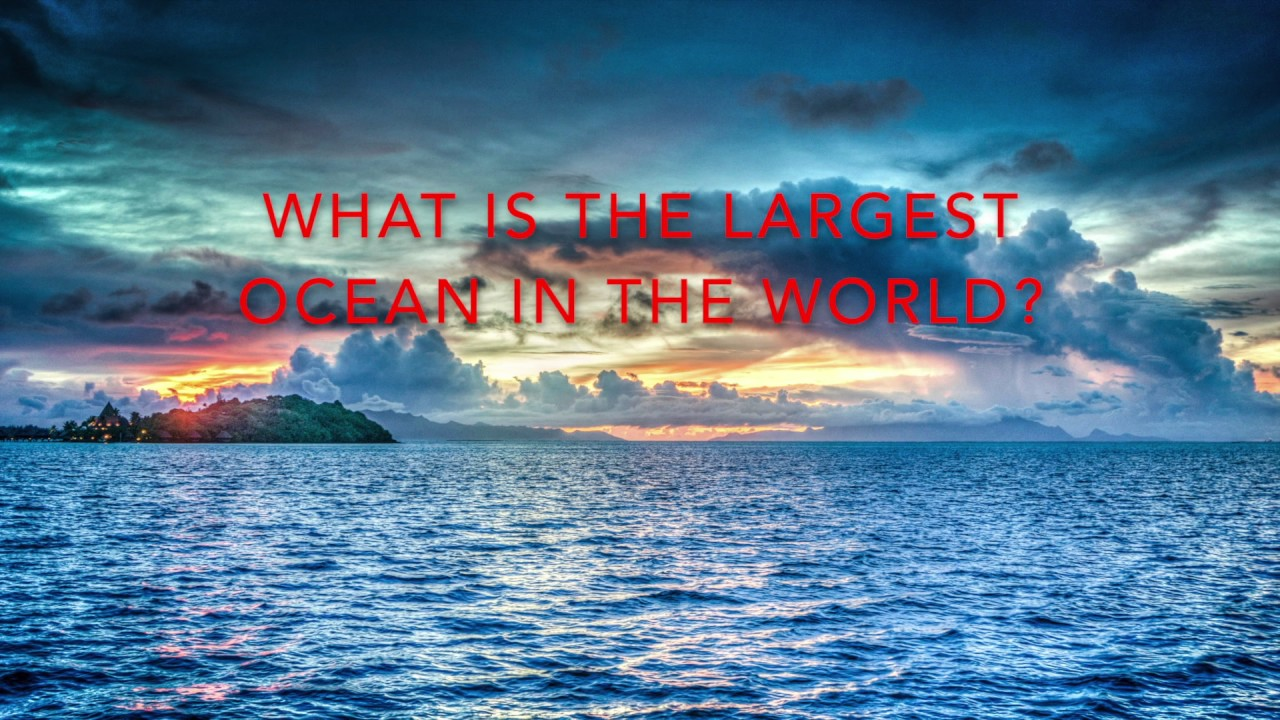 THE BIGGEST OCEAN IN THE WORLD YouTube - Biggest ocean in the world