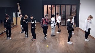[REUPLOAD] Wanna One (워너원) - Beautiful (뷰티풀) Performance Practice (Mirrored)
