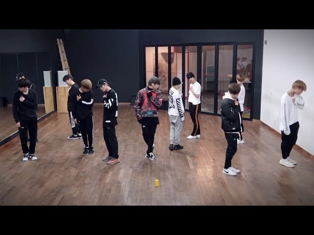 [REUPLOAD] Wanna One (워너원) - Beautiful (뷰티풀) Performance Practice (Mirrored)