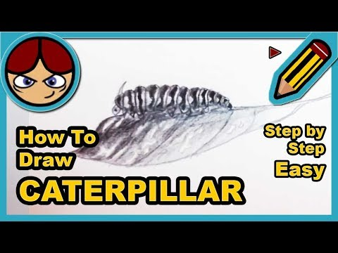 How to draw a Caterpillar - Como dibujar una Oruga - YouTube