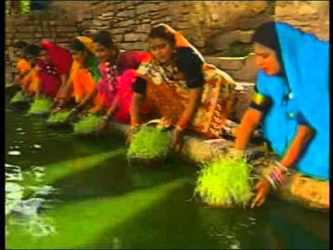 Devi Ganga Lehratu Ranga - Sadabahar Laxman Masturiya Jhankar - Chhattisgarhi Song