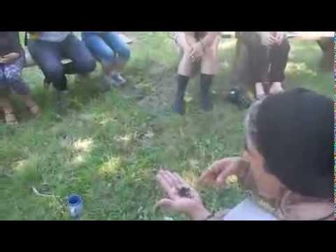 Permakultura Video 2   Stara Planina   Srbija