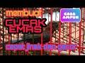Membuat Burung Cucak Emas Cucak Rowo Papua Pitohui Jinak Dan Gacor  Mp3 - Mp4 Download