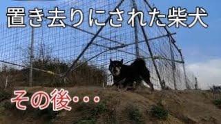 施設無料セッション 今回は野犬セッションさせて頂きます。 日時 4月28...