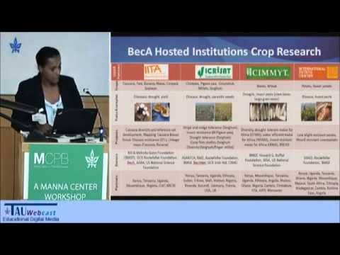 Mobilizing Biosciences for food and nutritional security in Africa - the case of BecA-ILRI Hub