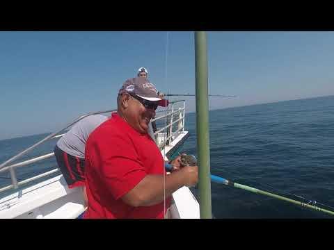 2017 Deep Sea Fishing Hampton Beach NH