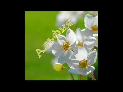 Альфия.Мантра посвящается всем с именем Альфия!!! На Абсолютный Успех в жизни!!!