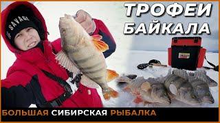 Ловля трофейного окуня на Байкале Рыбалка в Провале