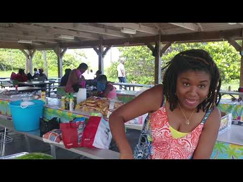 Random Vlog # 59: Church Picnic at  Dr. Von D. Mizell-Eula Johnson State Park  Dania Beach Florida
