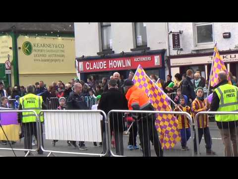 St Patrick's Day Parade Wexford Ireland 2015