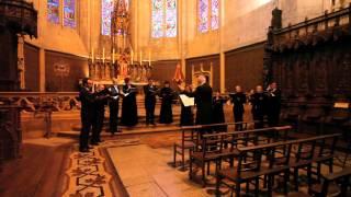 Andrea Gabrieli, Benedicam Dominum, Cantar Lontano, M Mencoboni