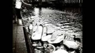 Swans - Green Empathy