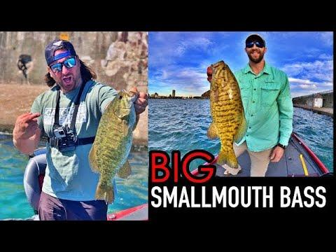 BIG BUFFALO HARBOR SMALLMOUTH BASS Fishing! (Lake Erie)