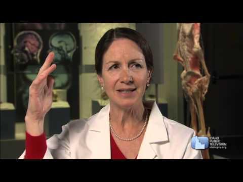 D4K: The Nervous System