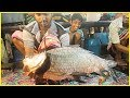 Most Fastest Big Rohu Fish Slicing / Cutting skill by Young Boy Fish Cut Into Pieces in Fish Market