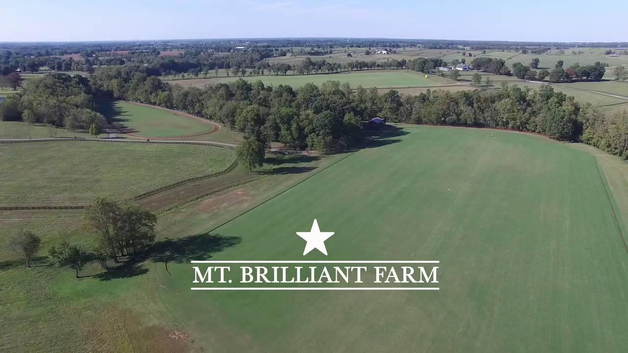 Mt Brilliant Farm Lexington Ky Youtube