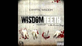 Cryptic Wisdom - One Day
