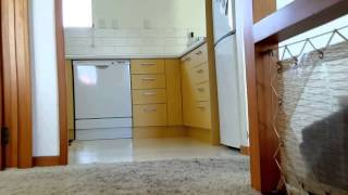 House for Rent in Auckland 3BR/1.5BA by Auckland Property Management