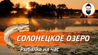Солонецкое озеро