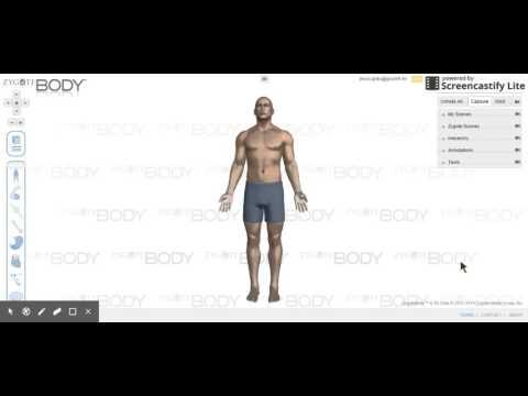 ZygoteBody Screencastify