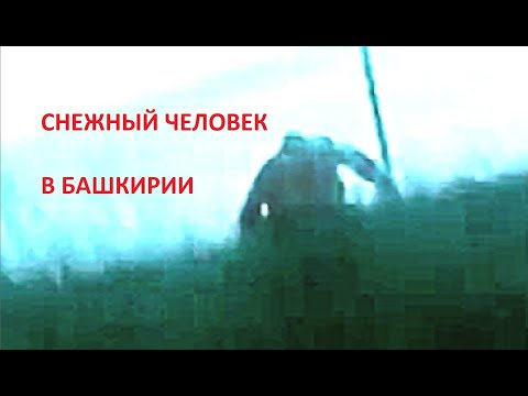Снежный человек в Башкирии.  Кого сняли на мобильный Алексей Ч. и девушки?