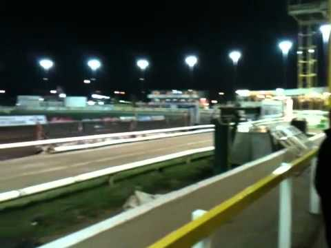 Sheffield Owlerton Stadium Greyhounds Tuesday 1st November 2011 [Race 12]