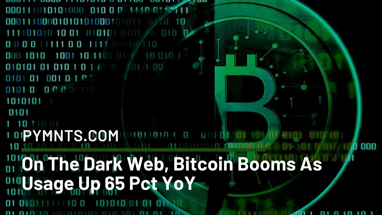 Image result for dark web bitcoin
