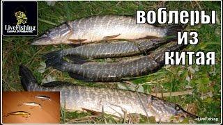 зимняя рыбалка на реке Воронеж. март 2018