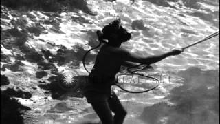 Navy diver descends along a rope underwater during training in United States. HD Stock Footage