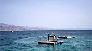 Dolphin reef EILAT 2000.wmv
