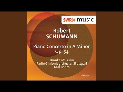 Piano Concerto in A Minor, Op. 54: I. Allegro affettuoso