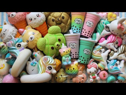 Squishy collection