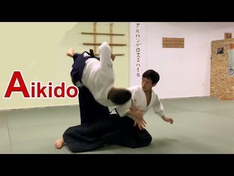 Beautiful Aikido -  Flow of energy SHIRAKAWA RYUJI shihan