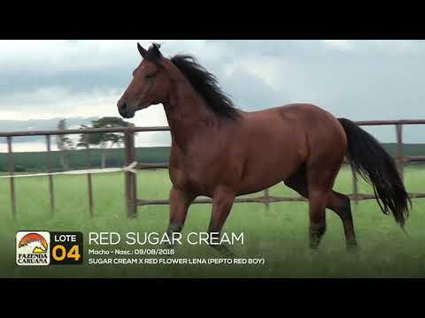 LOTE 04 - RED SUGAR CREAM