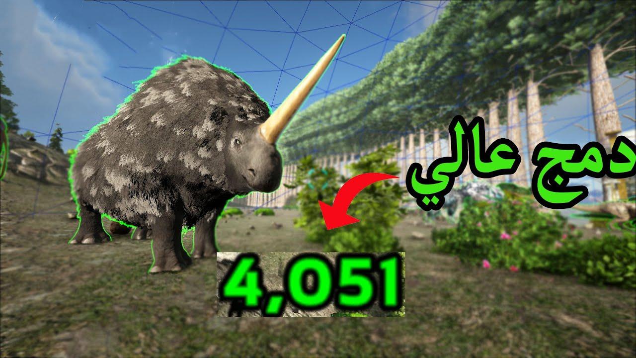كرستال أرك#21:ترويض وحيد القرن !!