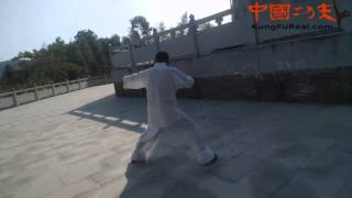 wongderful martial arts enthusiasts practicing Baji Quan     learning kungfu