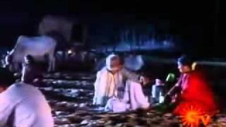 Tamil Movie Song  Aranmanai Kili  Raathiriyil Paadum Paattu
