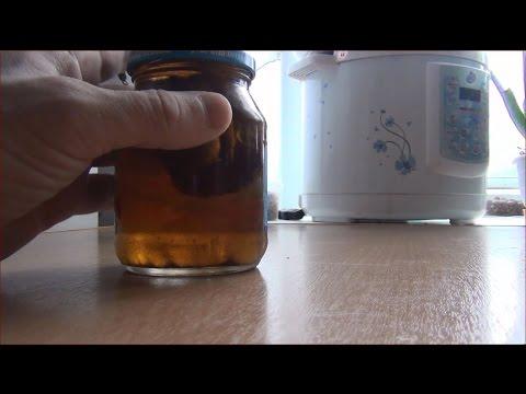 Агарик бразильский гриб. Купить курс 6 упаковок по цене