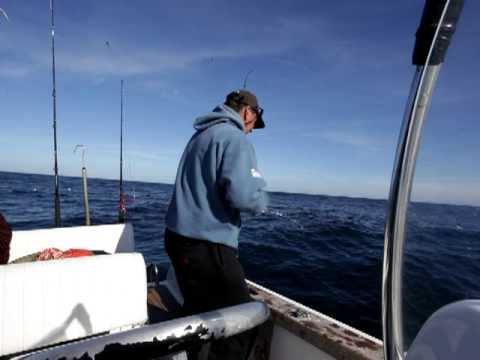 WSB Dinomax Kayak Rod - Video 1