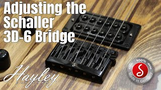 How to Adjust the Schaller 3D-6 | An overview of the features and adjustments