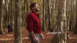 21 марта - Международный день лесов