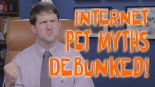 Top Internet Pet Myths...Debunked!