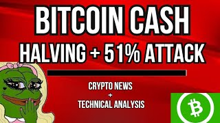 IS IT TIME TO BUY BITCOIN? TWITTER CEO - CRYPTO.COM - BITCOIN CASH 51% ATTACK - OPEN SOURCE