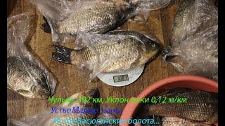 Клевая Рыбалка на реке Чулым Новосибирская обл в поисках Сазана Чулым рыбалкаскомфортом