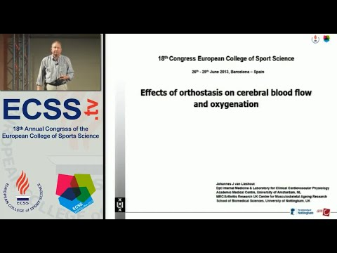 Effects of orthostasis on cerebral blood flow and oxygenation - Prof. Lieshout