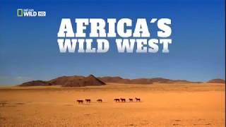 Дикие животные Жеребцы пустыни Намиб Африка Документальный фильм